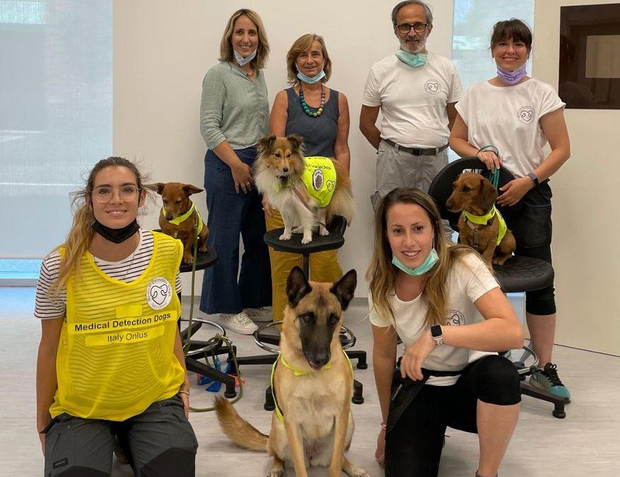 Allo IEO si addestrano cani a fiutare Sars-Cov2