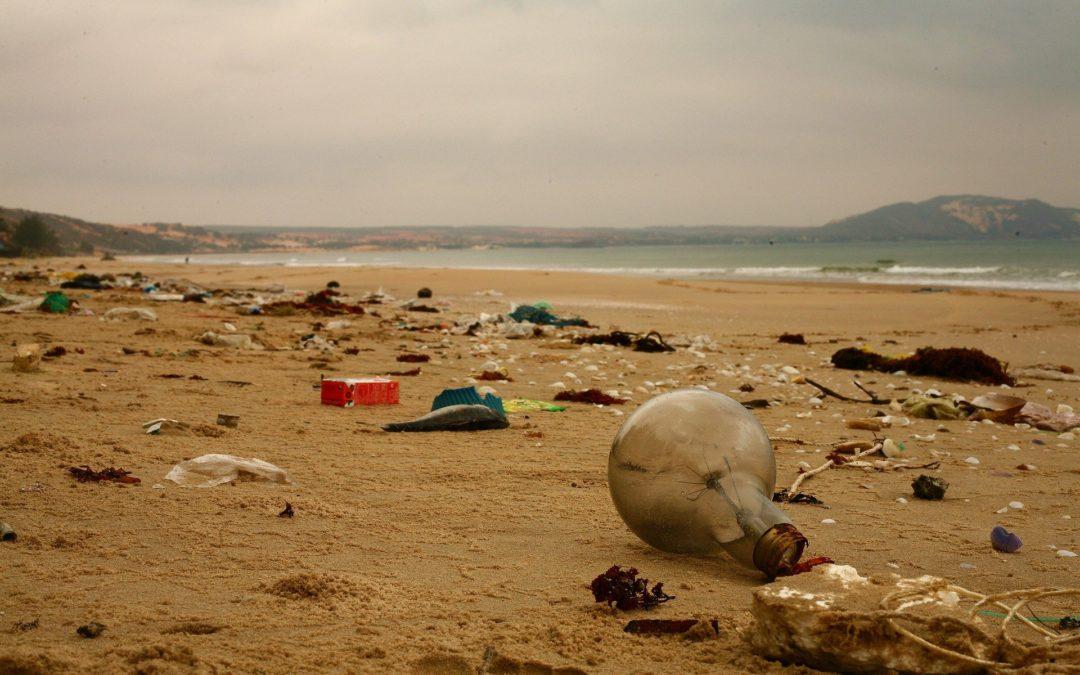 Specie aliene, rifiuti e plastica ecco le minacce per il Mare Nostrum