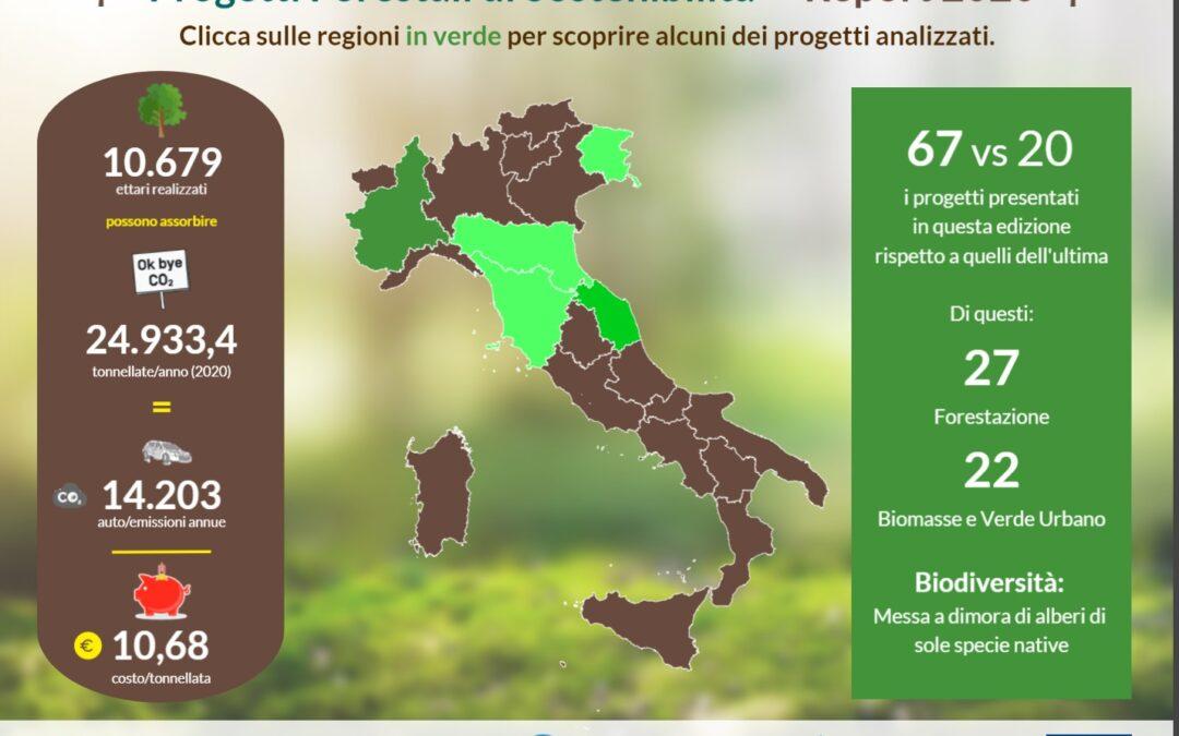 """Oggi dal CREA il """"Report Progetti forestali di sostenibilità 2020"""""""